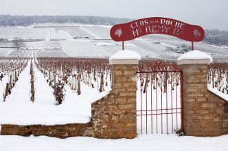 Clos la Roche in winter